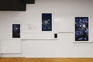 3 - Chambres à part 13 - Parfums de Femmes - Ori Gersht - On reflection, 2014, Video 5'30, 40x30 cm Ed.5_8 - copyright Aurélien Mole - Laurence Dreyfus - 2